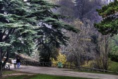 Bon point de vue - Parc des Buttes Chaumont - Paris | Flickr