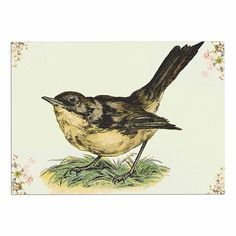 KESS InHouse NL Designs 'Vintage Bird' Nature Dog Place Mat, 13' x 18' -- You can get more details here : Dog food container
