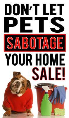 Don't Let Pets Sabotage Your Home Sale