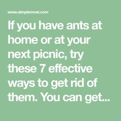 If you have ants at home or at your next picnic, try these 7 effective ways to get rid of them. You can get rid of ants using stuff you already have.