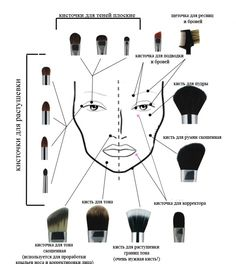 Fantastic makeup guide info are available on our internet site. look at this and you wont be sorry you did. Makeup Brush Uses, Makeup 101, Makeup Inspo, Makeup Hacks, Contouring Makeup, Eyebrow Makeup, Skin Makeup, Contouring Products, Highlighting Contouring