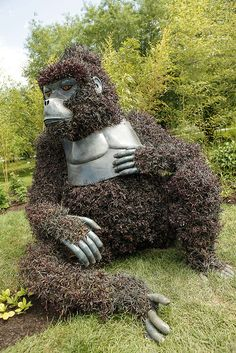 What CAN'T we do with a giant gorilla?!