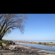 #Lake Erie   Lake Erie has beaches local features   Share Thanks     http://www.linksbuffalo.com/place/naked-tour/