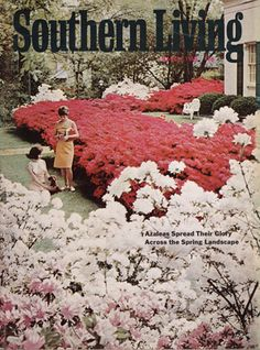 Our Favorite Old-School Covers: March 1968 Cover Southern Living Magazine, Country Magazine, Vertical Planter, Spring Landscape, Southern Charm, Cover Photos, Old School, Landscaping, March