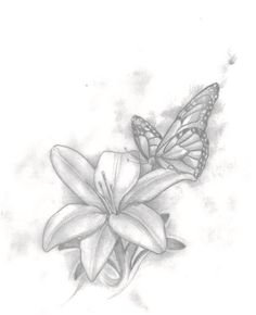 The sketch of my butterfly and lily tattoo #tattoo #blackandgrey #black #grey #art #butterfly #lily #girltattoo #side