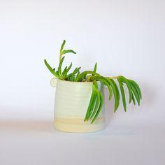 stoneware plant pot