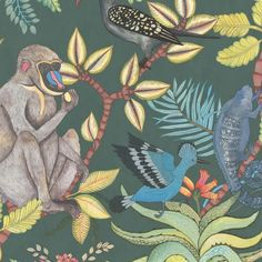 Savuti Wallpaper - A magnificent wallpaper featuring baboons, chameleons, hoopoes and hornbills amongst flowers and foliage, shown in multi colours on a petrol ground. The design is named after one of Africa's best loved national parks. Teal Wallpaper, Plant Wallpaper, Wallpaper Decor, Bathroom Wallpaper, Nature Wallpaper, Jungle Love, Green Ground, Scale Design, Cole And Son