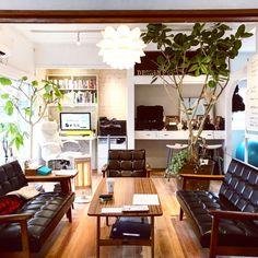 Bremendesignさんの、北欧,オフィス,カリモク60 Kチェア,カリモク60カフェテーブル,観葉植物,部屋全体,のお部屋写真