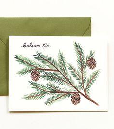 balsam fir holiday card