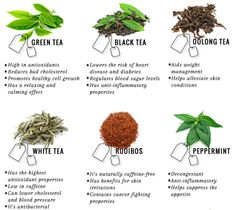 We all know that tea is great for a light caffeine boost, clearing your skin, and keeping you hydrated, but what else can these little leaves do?Green: Green tea is one of the lesser processed teas, therefore it's high in antioxidants!Black: Black tea is known for it's larger amounts of caffeine and antioxidants.Oolong: Oolong provides the benefits of both black and green teas, and with it, a fruity flavor.White: White tea reigns as the least processed type of tea, making its antioxidant…