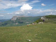 Parque Natural de Urbasa y Andia. Senderismo naturalístico