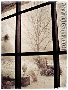 Dino Buzzati - Vorrei che tu venissi da me in una sera d'inverno e, [...] Alle volte l'amore lo si vive senza saperlo, inconsapevolmente   #DinoBuzzati, #amore, #solitudine, #liosite, #citazioniItaliane, #frasibelle, #ItalianQuotes, #Sensodellavita, #perledisaggezza, #perledacondividere,