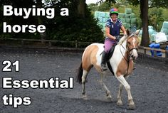 Being the owner of a horse or a pony can be a lot of fun, but it's also a lot of hard work and responsibility. However, buying horses and ponies can be also be scary, especially if it's your first animal. Fortunately help is at hand with our essential guide.