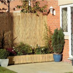 Another variation of using bamboo for a privacy screen