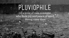 pluviophile_rain_lover_2014-02-192 (1)