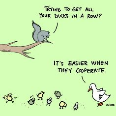 Getting your ducks in a row. #comics #makemelaugh #funny #laugh #lol #UOPX