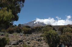 Beklimming Kilimanjaro 2e dag