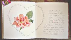 A peach colored rose - Journal page -  by Catherine Carey