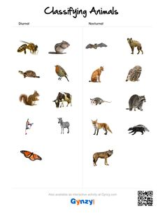 Teaching with help of the interactive whiteboard in a simple and effective way Classifying Animals, Interactive Whiteboard, Astronomy, Worksheets, Keys, Pdf, Animal Classification, Unique Key, Key