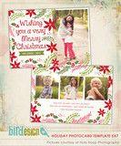 Holiday Photocard Template   Christmas Spirit   Photoshop templates for photographers by Birdesign