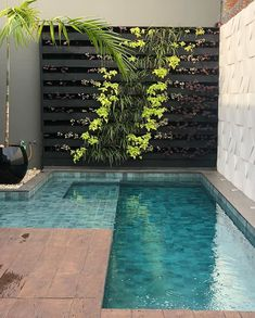 The Best Swimming Pools Design For Your Backyard Decor - Many people with extra backyard space decide they want to add a swimming pool. In warmer climates, this can add financial value to your home, as well . Swimming Pool Landscaping, Small Swimming Pools, Small Pools, Swimming Pool Designs, Pool Decks, Lap Pools, Outdoor Swimming Pool, Small Backyard Patio, Backyard Patio Designs