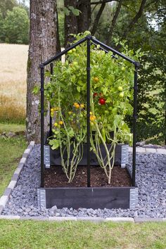 Increase Some Modern Day Design For Your Front Room With Art Deco Coffee Tables Vxthus For Pallkrage Eller Friland - Klostra Backyard Greenhouse, Backyard Vegetable Gardens, Veg Garden, Vegetable Garden Design, Garden Boxes, Farm Gardens, Small Gardens, Outdoor Gardens, Sloped Garden