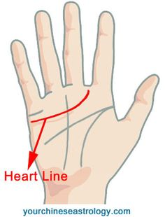 233 Best Palmistry images in 2019 | Palmistry, Palm reading, Palm of