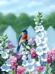 Eastern Bluebird with Delphiniums by Bradley Jackson All Birds, Love Birds, Pretty Birds, Beautiful Birds, Bird Pictures, Colorful Birds, Wildlife Art, Bird Art, Beautiful Paintings