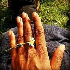 #mollami #printemps #spring #marguerite Engagement Rings, Spring, Jewelry, Daisy, Enagement Rings, Wedding Rings, Jewlery, Jewerly, Schmuck