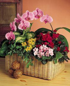 Floral Basket by Flower Factor, via Flickr