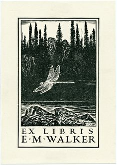 Collection of vintage 19th & 20th century bookplates-- beautiful!