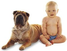 Dog and Children Look-a-Likes | linein designs