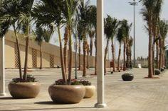 KING ABDULLAH SPORT CITY #GIOVE #planter in #Jeddah #Bellitalia very elegant street furniture solution. #concrete and #marble #urban #design street furniture - arredo urbano - mobiliario urbano - mobilier urbain