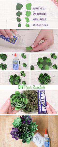 Use Beacon Adhesives Zip-Dry to make a painted concrete planter filled with paper succulents!