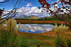 A farm dam scene in the Langkloof, South Africa. South African Artists, How To Buy Land, Water Supply, Heaven On Earth, Old World, Scene, Afrikaans, Ponds, Landscape