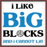 "A little volleyball fun with Sir Mix's song. Text design features ""I like BIG BLOCKS"" in large letters and beneath it ""and I cannot lie"" in smaller text. Cute design for any volleyball player or coach. Volleyball Shirts, Volleyball Locker Signs, Volleyball Locker Decorations, Volleyball Mom, Girls Softball, Volleyball Players, Volleyball Sayings, Volleyball Drills, Coaching Volleyball"
