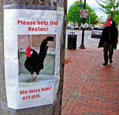 funny signs 19 SIGNS, are you being for serious? (31 photos)