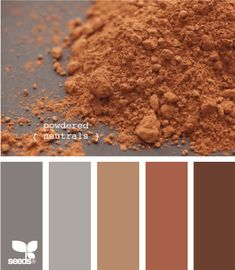 powdered neutrals -- the brown in the middle is my favorite for a good base color to build around.