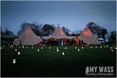 Beautiful paper bag lanterns dotting the lawn. This would be so pretty at a winery!