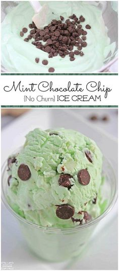 Easy No Churn Homemade Mint Chocolate Chip Ice Cream Recipe! This is a great Green Treat Recipe for St. Patricks Day and an easy Dessert Recipe for parties homemade smoothies Mini Desserts, Brownie Desserts, Oreo Dessert, Coconut Dessert, Low Carb Dessert, Frozen Desserts, Chocolate Desserts, Easy Desserts, Dessert Recipes