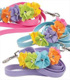 Rainbow Tinkies Garden Dog Leash