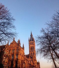 From our friends at Glasgow  @uofglasgow - Friday Feeling! Thanks to @samholburn for this beautiful pic!  ------------------- #fridayfeeling #UofG #UniversityofGlasgow #GlasgowUni #Glasgow #Scotland #College #Campus #UofGlasgow #student #uofgstudent #scholarship #socialmedia #goviewyou