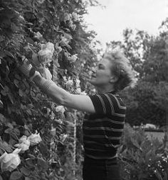 Mona von Bismark, Gardening in Capri