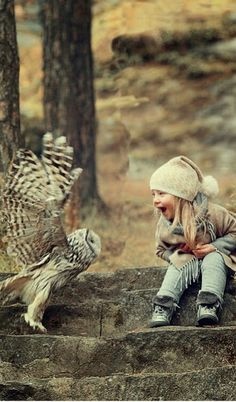 Unusual interaction between what looks like a barn owl and a fascinated little girl