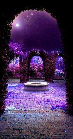 ☛All Things Purple☚ Purple Love, All Things Purple, Shades Of Purple, Deep Purple, Purple Stuff, Purple Colors, Purple Flowers, Pink, Beautiful World