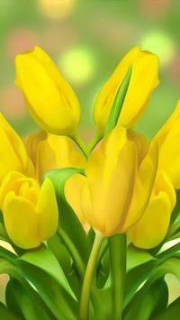 Różowe tulipany - Tapeta na telefon Flower Photos, Vibrant, Plants, Yellow, Flowers, Photos Of Flowers, Flower Pictures, Flower Photography, Plant