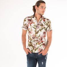 36be938fce Las 111 mejores imágenes de Camisas y camisetas EDÉN en 2019