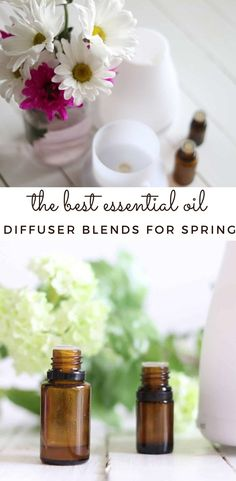 Thankfully the beautiful spring weather is right around the corner. Bring the beautiful scents of spring inside your home with these 5 best essential oil diffuser blends for spring. #essentialoils #diffuser #spring Best Essential Oil Diffuser, Best Essential Oils, Young Living Essential Oils, Roller Bottle Recipes, Spring Weather, Natural Solutions, Diy Skin Care, Diy Beauty, Natural Skin Care