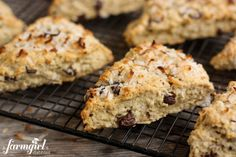 Coconut Scones with Dark Chocolate Chunks - www.afarmgirlsdabbles.com