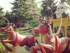 Santas Village in Bracebridge Ontario. Christmas in August? Yes it does exist! Camping is very good here! Places To Travel, Travel Destinations, Santa's Village, Zoos, Interesting Facts, Ontario, Places Ive Been, Camper, Fun Facts
